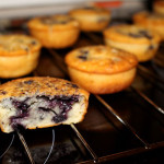 Blaubeer-Muffin
